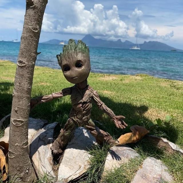 Une partie de la Team est à Tahiti pour de très beaux projets à venir...Je s'apelle Groot !!! @icfr_polynesia @tahititourisme @airtahitinui  #tourisme #com #socialmedia #tahiti #creative #groot #intercontinentallife #intercontinentaltahiti